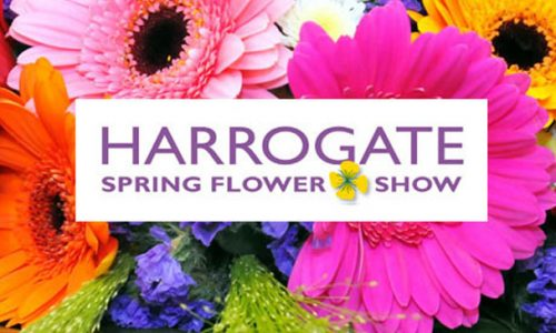 Harrogate-spring-Flower-Show1